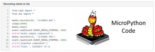 Micro Python Interface
